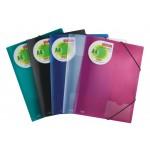 Deli E39579 Elastic Folder A4 Assorted PK/4
