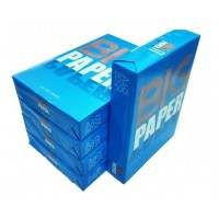 BIG Everyday Copy Paper, White, A4 , 80 gsm, 5 Reams/Box