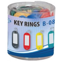 Standard Key Tags/ Rings , Assorted Colors PK/50